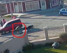 Una mujer fue atropellada, un vecino paró para ayudarla y le terminó robando