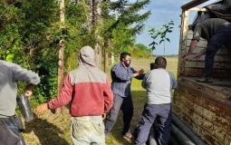 Plan Limón: con la descarga de 700 plantines, quedó instalada la primera quinta en Santa Ana