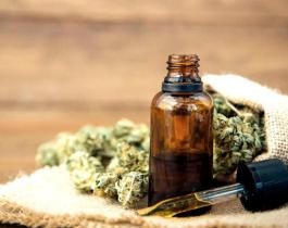Crean un dispositivo que testea la flor del cannabis para mejorar la calidad de su aceite